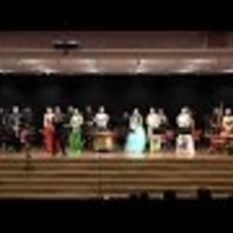 Concert by Chinese Opera Orchestra of Shanghai